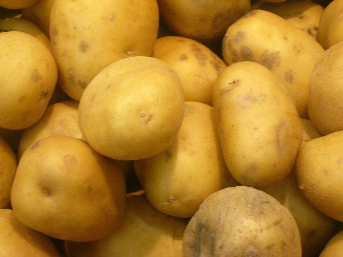 Kartofel'-optom-kartofel'-optom-v-Minske-2